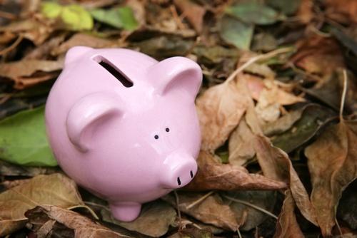 Blog piggy bank.jpg